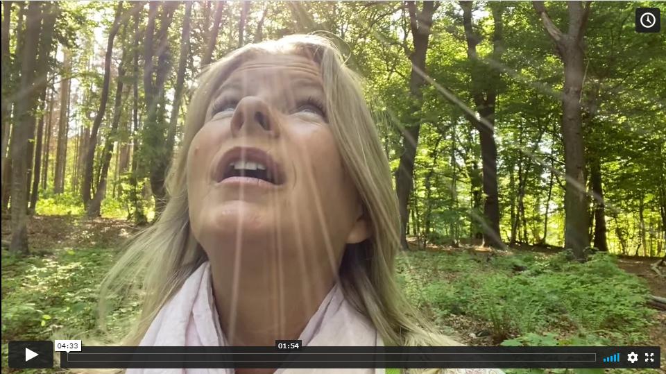 Durch das Portal 2020 in dein neues Leben - Video 1 des Onlinekurses